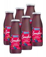 SALVEST Smushie BIO Ovocné smoothie s borůvkami, malinami a černým rybízem 6x240 ml