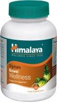 Himalaya Herbals Triphala Bowel Wellness 60 kapslí