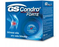 GS Condro Forte 120 tablet