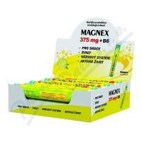 Magnex 375mg + B6 tbl.eff. 12x20tbl. display