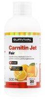 Survival Carnitin JET 3000 fair 500 ml
