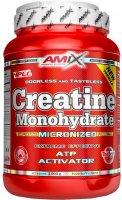 Amix Creatine monohydrate, 1000g